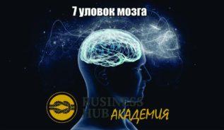 картинка 7 уловок мозга